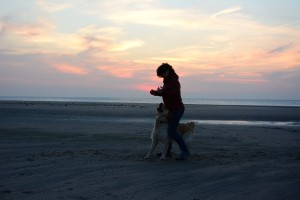 Dogdance Training am Strand
